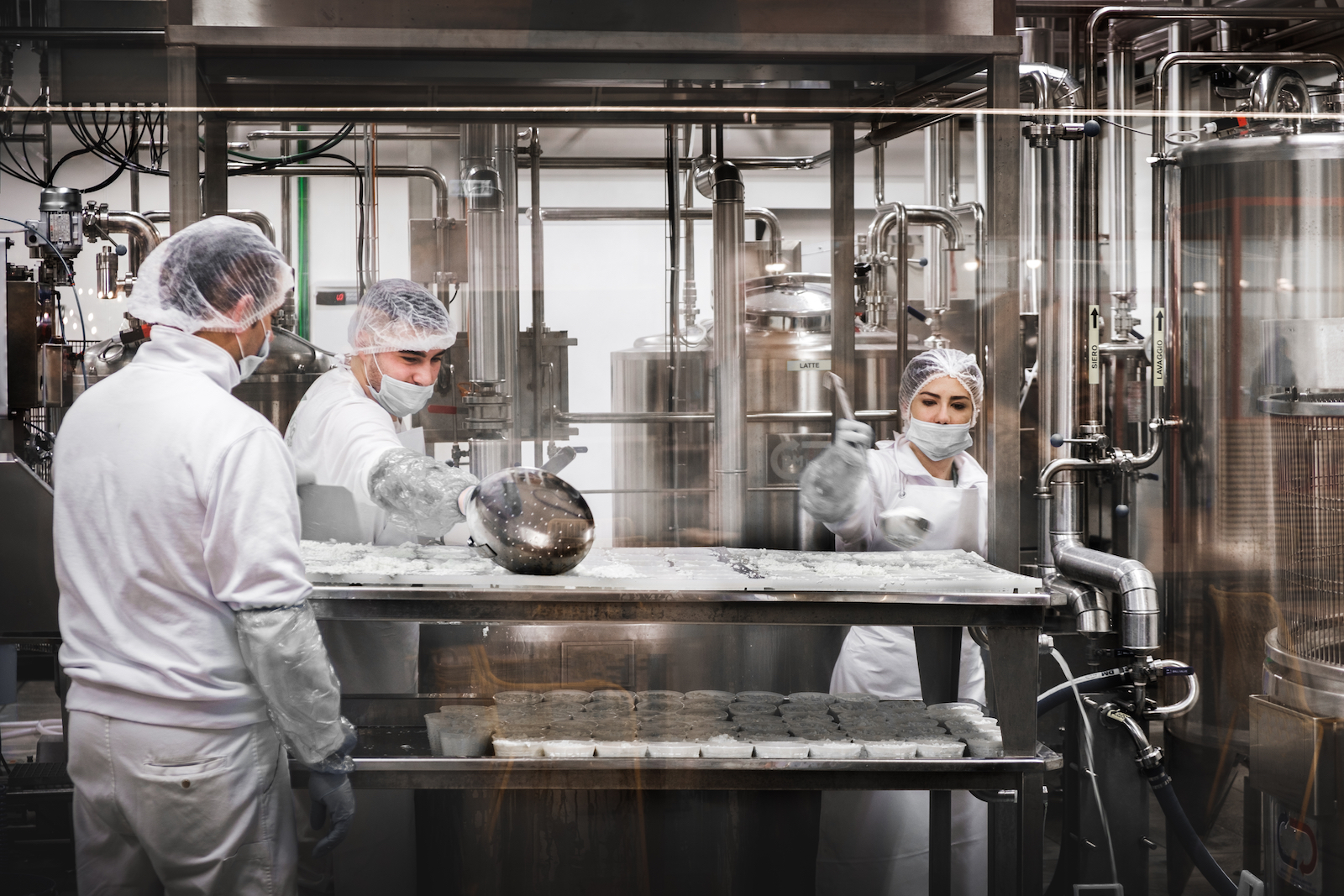 Food manufacturing photo